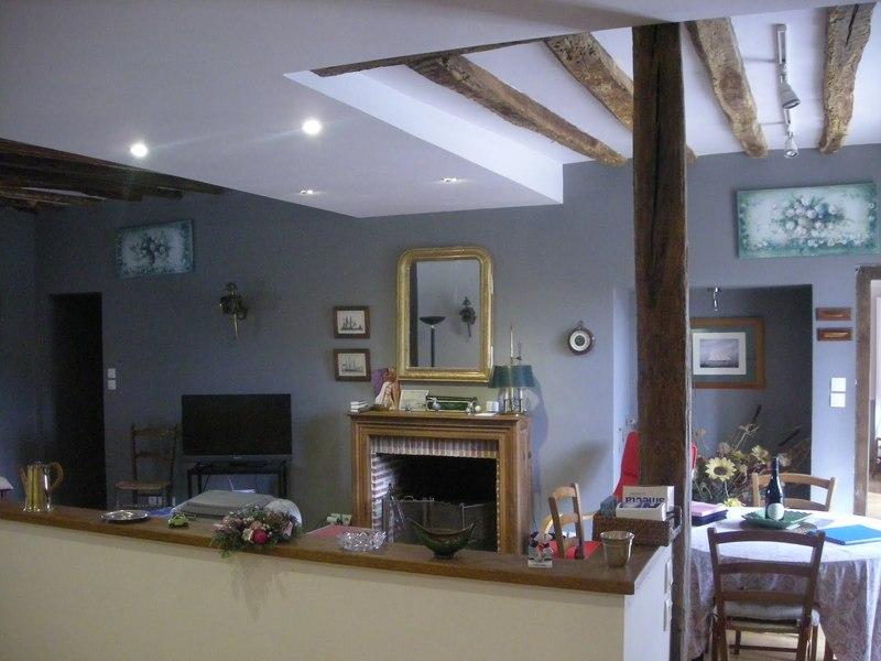 Chateau-Le-Plessis-36330-Velles-le-sequoia-Salon
